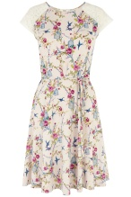 Oriental Birdcage Dress